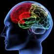 Şizofreni ve Otizm Arasındaki Genetik Örtüşme Şizofreni ve Bipolar Bozukluktakinden Çok Daha Düşükmüş…