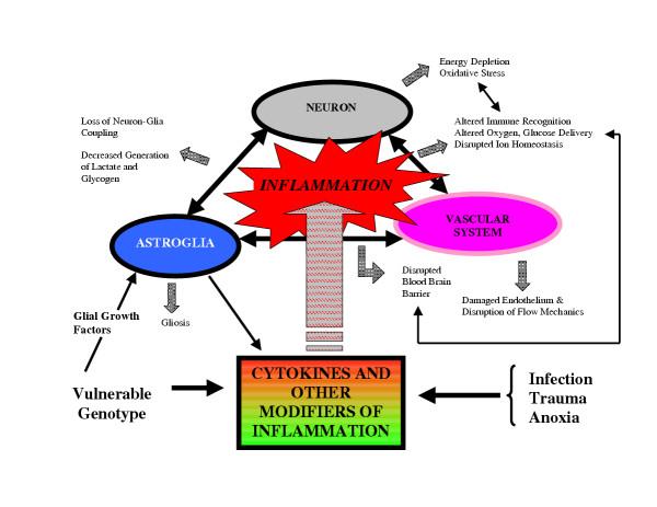 inflamasyon