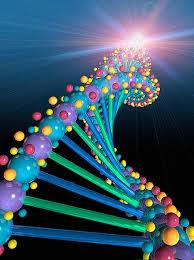 kader ve gen