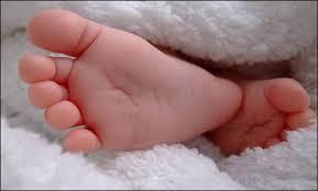 bebek ayağı