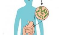 Bağırsak Bakterileri ve Otizm İlişkisine Dair Bir Kanıt Daha…