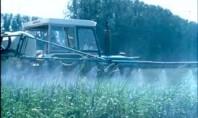 Tarımda yaygın kullanılan GLA, otizm benzeri etkilere neden oluyor…