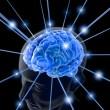 Otizm ve Şizofreni ile Beyin Proteinlerinin, Antikorlara Olan Reaksiyonu